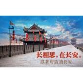 跟着唐诗读长安•美芽成长西安文化研学之旅